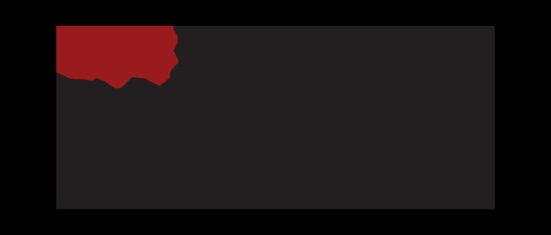 usc-div-biokinesiology-pt-logo